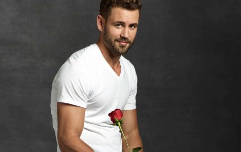 The Bachelor returns