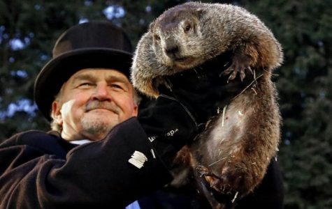 Groundhog Day: the best day
