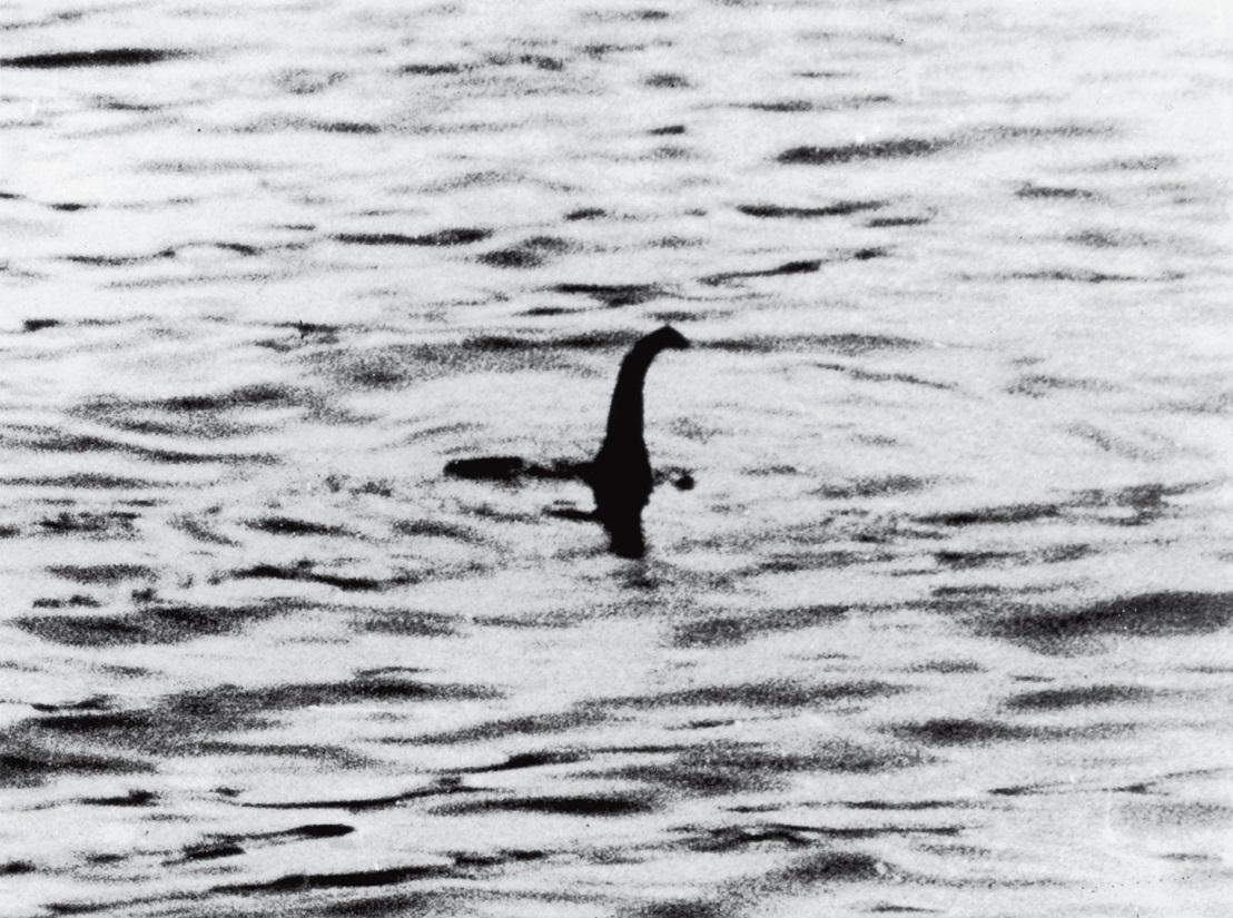 The legendary photo of Nessie that started the modern day hunt.