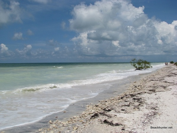 "Honeymoon Island wins this competition in the eyes of local Floridians because of all of its wonderful qualities including the fact that it is ""much more scenic with better nature"" as senior Charlotte Arndt comments."