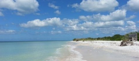 The best beaches: ranked