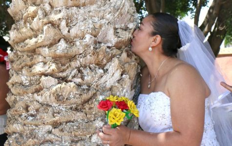 "A ""tree-mendous"" wedding"
