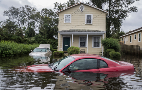 Hurricane Florence: hurricane season starts off strong