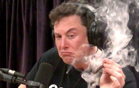 Mr. Musk in prime inventor/business extraordinaire condition