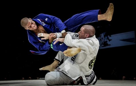 In defense of the martial arts