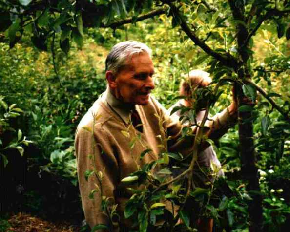 This is a picture of food forest pioneer Robert Hart in his very own forest garden.