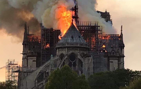 Notre Dame cathedral fire