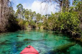 Kayaking down the 74 degree Weeki Wachee River provides a respite from the summer heat.