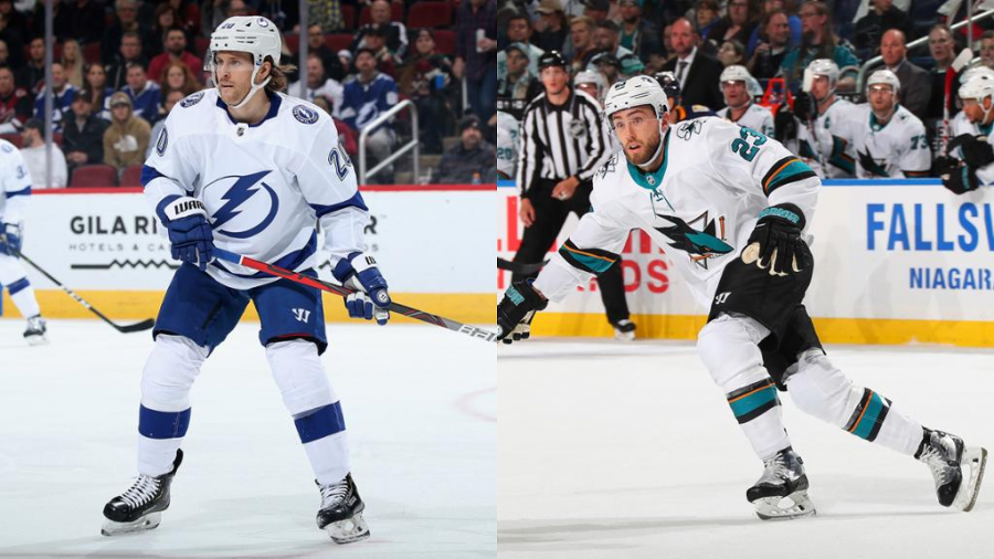Blake Coleman and Barclay Goodrow add tenacity and grit to a talented Lightning team.