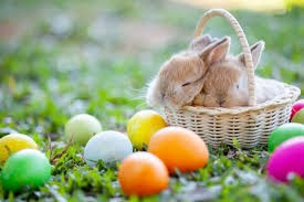 The bunny and the eggs are two symbols of Easter.